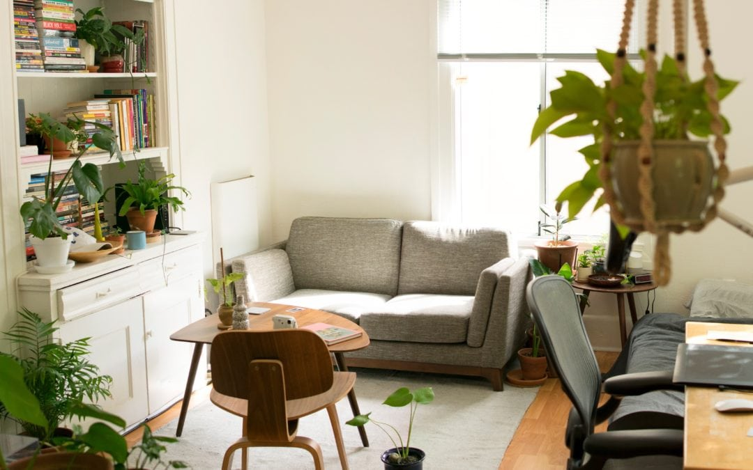 green apartment living with plants